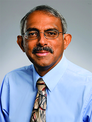 Prof. K. M. Venkat Narayan
